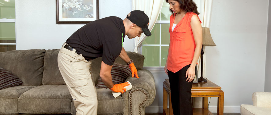 Rose Hill, VA carpet upholstery cleaning