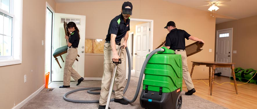 Rose Hill, VA cleaning services